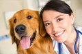 Vet with a cute dog Royalty Free Stock Photo