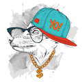 Portrait of fox in glasses, headphones and hip-hop hat. Vector illustration.