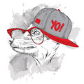 Portrait of fox in hip-hop hat. Vector illustration.