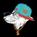 Portrait of fox in hip-hop hat. Vector illustration.