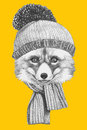 Portrait of Fox with scarf and hat.