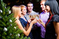 Portrait of friends celebrating New Year Royalty Free Stock Images