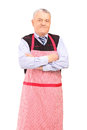 A portrait of a gentleman wearing apron and posing Stock Image