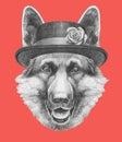 Portrait of German Shepherd with hat. Royalty Free Stock Photo
