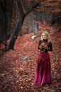 Portrait of a girl beautiful woman in an autumn forest Stock Photography