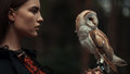 Portrait of girl with owl in hand. Close-up.