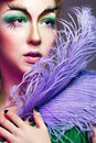 Portrait of girl with unusual make up attractive young a fabulous makeup and feathers close Stock Photography