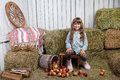 Portrait of girl villager near pail with  apples Royalty Free Stock Images