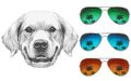 Portrait of Golden Retriever with mirror sunglasses.