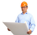 Portrait of handsome engineer at work isolated on white background Royalty Free Stock Images