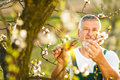Portrait of a handsome senior man gardening in his garden Royalty Free Stock Photo