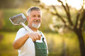 Portrait of a handsome senior man gardening in his garden, Royalty Free Stock Photo