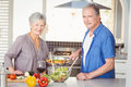 Portrait of happy senior couple preparing food while standing in kitchen Stock Photography