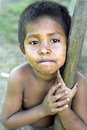 Portrait of indian sick child nicaragua san andres village closeup miskito boy who is holding on to a rice pestle wooden pestle Royalty Free Stock Photography