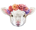 Portrait of Lamb with floral head wreath.