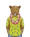 Portrait of Leopard in summer shirt with Hawaiian Lei.