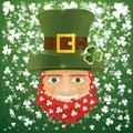 Portrait Of Leprechaun. Irish ...