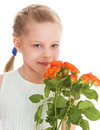 Portrait of a little girl she is holding bouquet pink roses on holiday isolated on white background Royalty Free Stock Photos