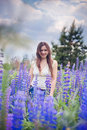 Portrait in lupines of beautiful woman a field of flowers Stock Photos