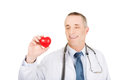 Portrait of male doctor holding heart model Royalty Free Stock Photo