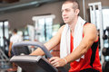 Portrait of a man training in a fitness club Royalty Free Stock Image