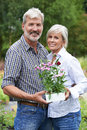 Portrait Of Mature Couple Shopping At Garden Center Royalty Free Stock Photo