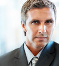 Portrait of a mature handsome business man Royalty Free Stock Photos