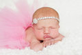 Portrait of a newborn baby girl in pink tutu headshot sleeping day old wearing and rhinestone headband she is sleeping on her Royalty Free Stock Photo