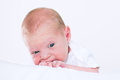 Portrait of a newborn baby just several days old Royalty Free Stock Photo