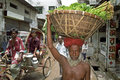 Portrait of old man carrying vegetables on head bangladesh this senior farmer peasant horticulturist brings its agricultural Royalty Free Stock Photography