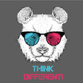 Portrait of the panda in the colored glasses. Think different. Vector illustration. Royalty Free Stock Photo