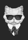 Portrait of Persian Cat in suit.