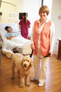 Portrait of pet therapy dog visiting female patient in hospital with volunteer smiling to camera Stock Photo