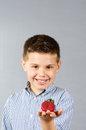 Portrait photograph child eating strawberries Royalty Free Stock Photo