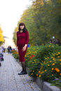 Portrait of Pregnant woman standing in autumn park near flowers Royalty Free Stock Photo