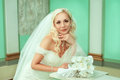 Portrait of pretty bride Royalty Free Stock Photo