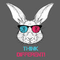Portrait of the rabbit in the colored glasses. Think different. Vector illustration. Royalty Free Stock Photo
