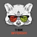 Portrait of the raccoon in the colored glasses. Think different. Vector illustration. Royalty Free Stock Photo