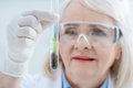 Portrait of senior woman scientist analyzing plant in glass test tube Royalty Free Stock Photo