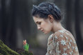 Portrait of sensual young woman wearing elegant dress in a coniferous forest. Royalty Free Stock Photo