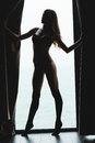 Portrait in silhouette of seductive beautiful young female standing on tiptoe Stock Photography