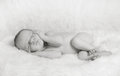 Portrait of sleeping newborn Royalty Free Stock Photos