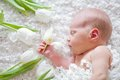 Portrait of sleeping newborn baby indoor Royalty Free Stock Image