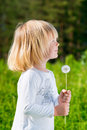 A portrait of smiling blond little boy who holding a dandelion Royalty Free Stock Photos