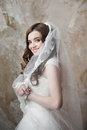 Portrait of the smiling bride with perfect make up happy and hairstyle Stock Photos
