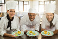 Portrait of smiling chefs team holding dessert plates Royalty Free Stock Photo