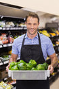 Portrait of a smiling handsome worker holding a box with vegetables Royalty Free Stock Photo