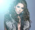 Portrait of stylish woman in fur Royalty Free Stock Image