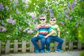 Portrait of two little brothers sitting on small fence in bushes Royalty Free Stock Photo