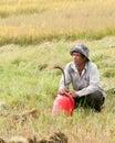 Portrait of vietnamese farmer working on the rice mekong delta vietnam mar field in southern vietnam Royalty Free Stock Photo